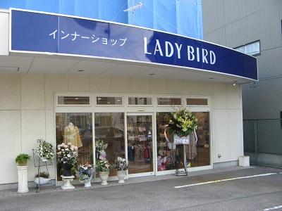 ◆仲介実績◆LADY BIRD様